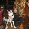 Need a petsitter to take care of my 1 yr old Siberian Husky
